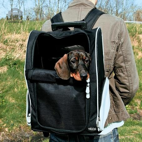 e345e73a7288b2 Trixie Trolley wózek / plecak transportowy dla psa lub kota 36 x 27 ...
